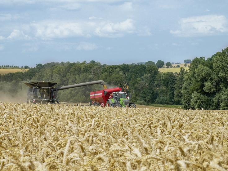 Fendt IDEAL 9T ved tærskning i en hvedemark med læssevogn.