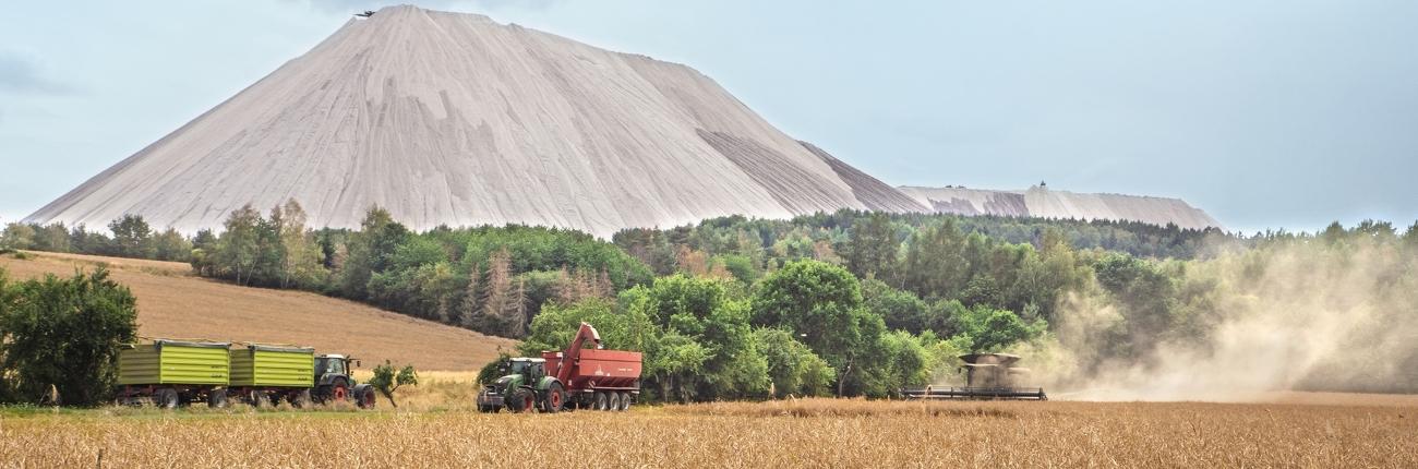 Fendt IDEAL 9T og to Fendt Vario-traktorer i kornmarken.